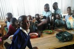 Feeding-Program